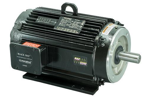 BlackMax Inverter Duty Electric Motors
