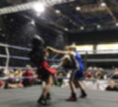 Pro Kickboxing
