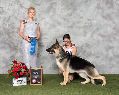 1st Novice at the GSDCA National.jpg