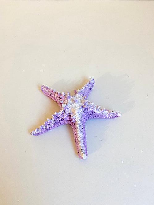 Estrela do mar lilás