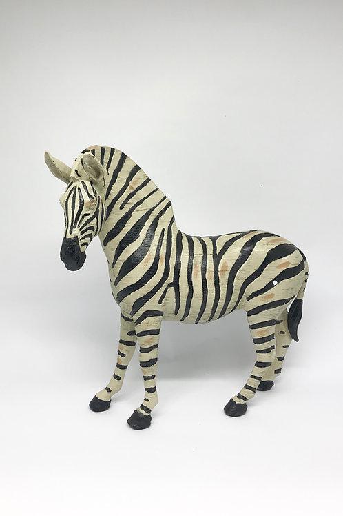 Zebra resina M