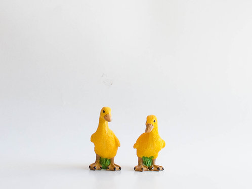Casal patos resina