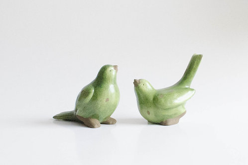 Casal pássaros