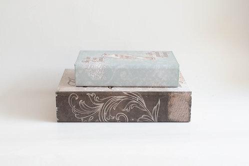 Conjunto caixa livros Pássaros azul e marrom