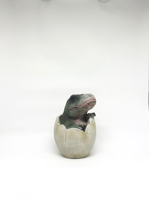 Dinossauro Rex ovo