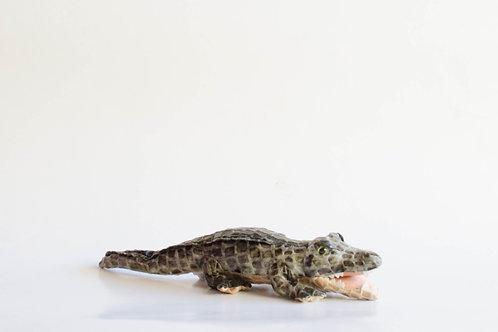 Crocodilo pelúcia