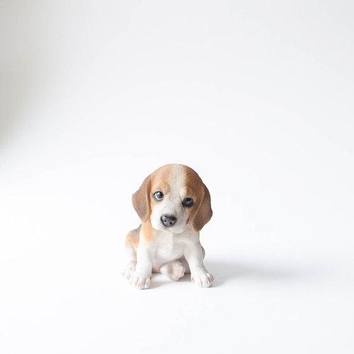 Cachorro resina