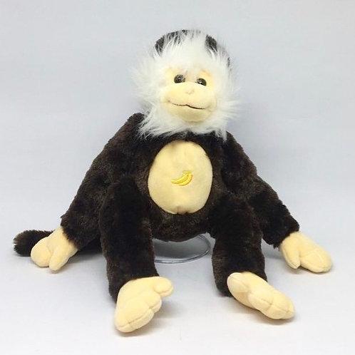 Macaco de cara branca