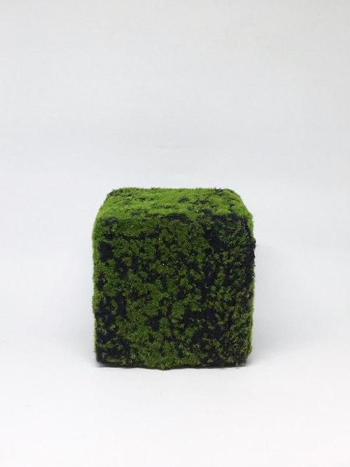 Cubo musgo 15x15