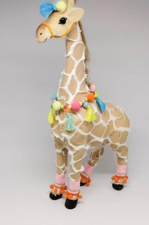 Girafa Stella