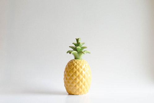 Abacaxi colorido P