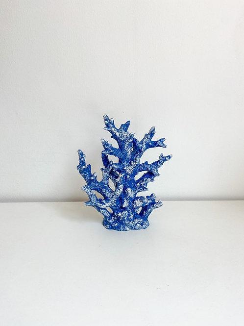 Coral alto azul