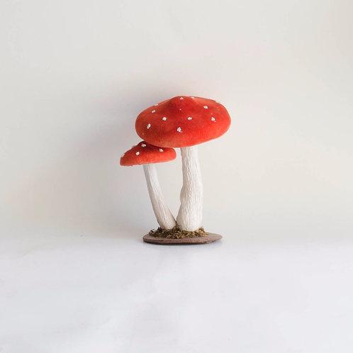 Dupla de cogumelos G
