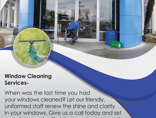 Why Professional Window Cleaning?