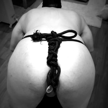 Sumo Buttplug Bondage