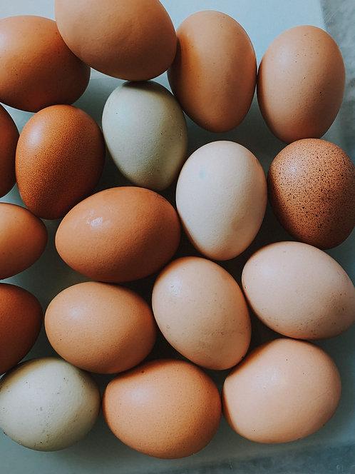 Local Eggs (dozen)