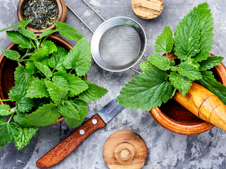 Lemon Balm and How To Use It