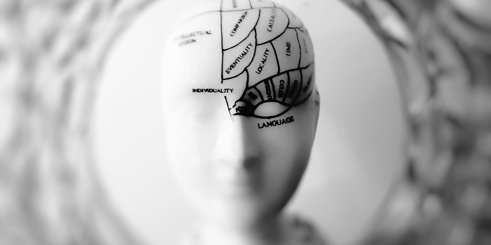 Serious Mental Illness: An Overview for Mental Health Providers