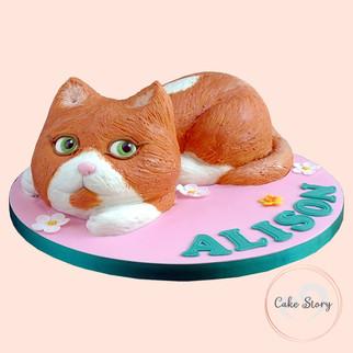 pet_cat.jpg