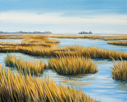 New England Marsh
