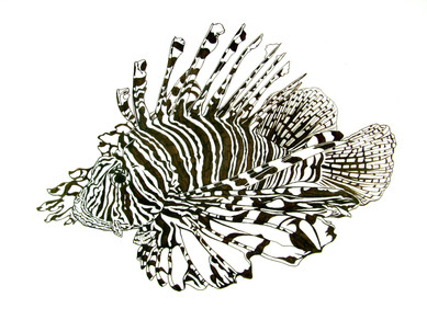 Lionfish at MAEA Members Exhibit: Clearly Defined