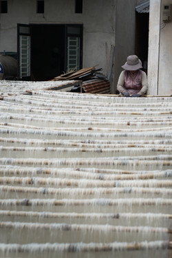 Drying rice noodles