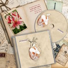 עיצוב ואיור אלבום