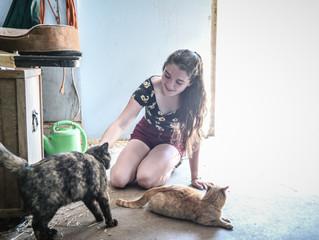Go Far Heroes: The Deerfield Kitties