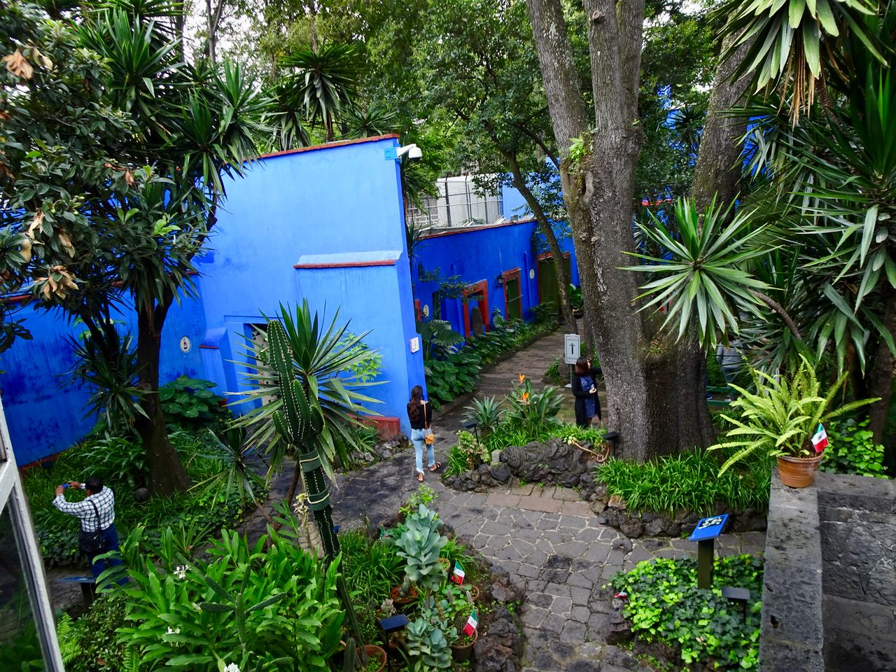 Patio des Casa Azul