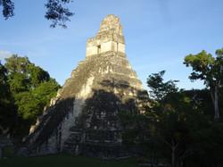Tikal - wie man es kennt
