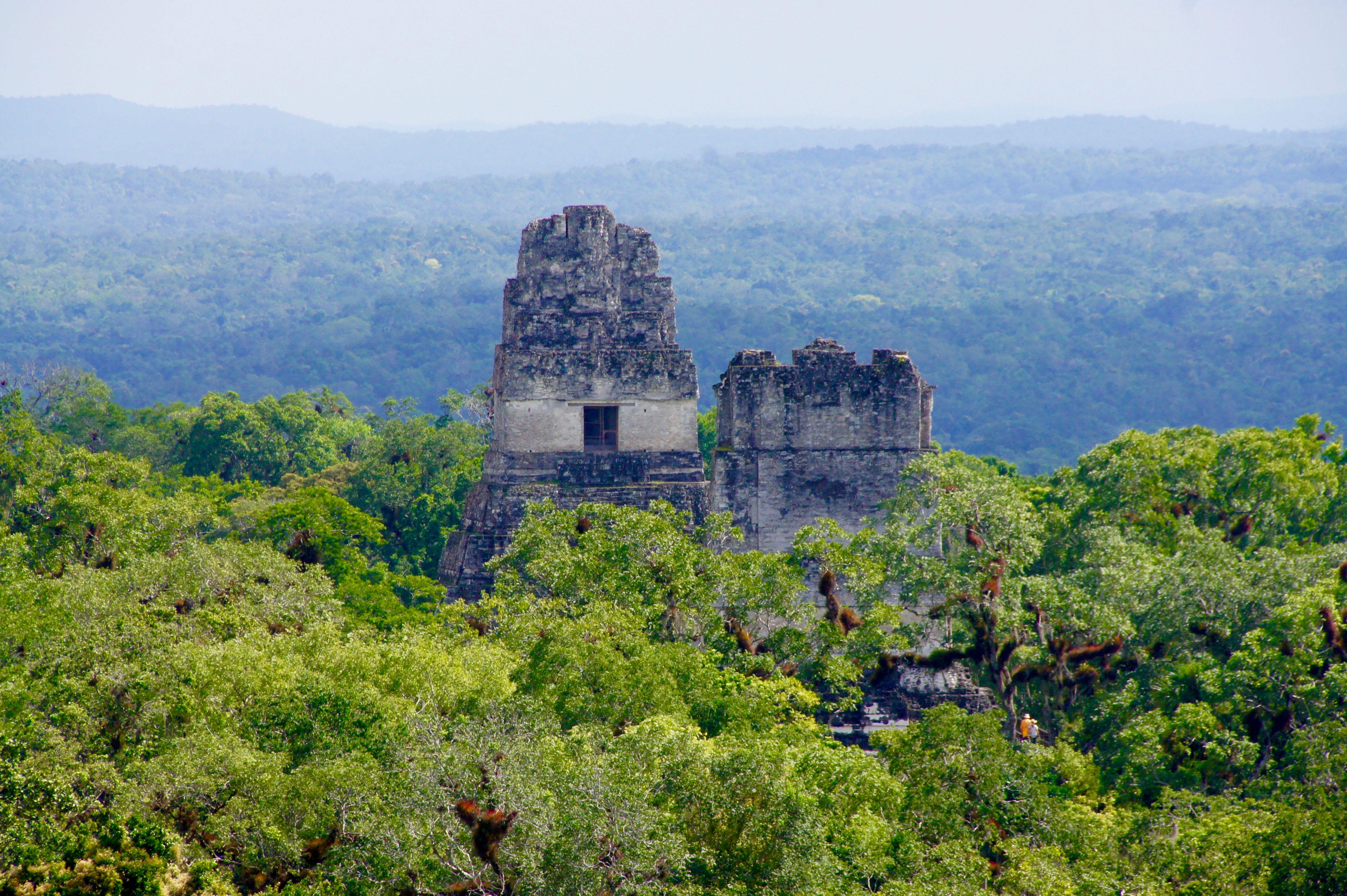 Ausblick über Tikal