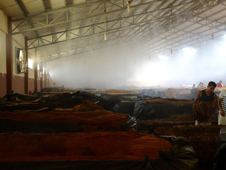 Jahrelange Lagerung in feuchter Luft - der Gestank ist unvorstellbar