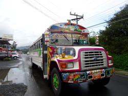 Lokaler Bus