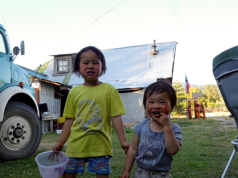 Mini-Kiddies beim Beerenpflücken