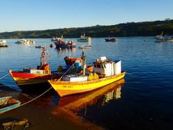 Fischerboote von Dalcahue
