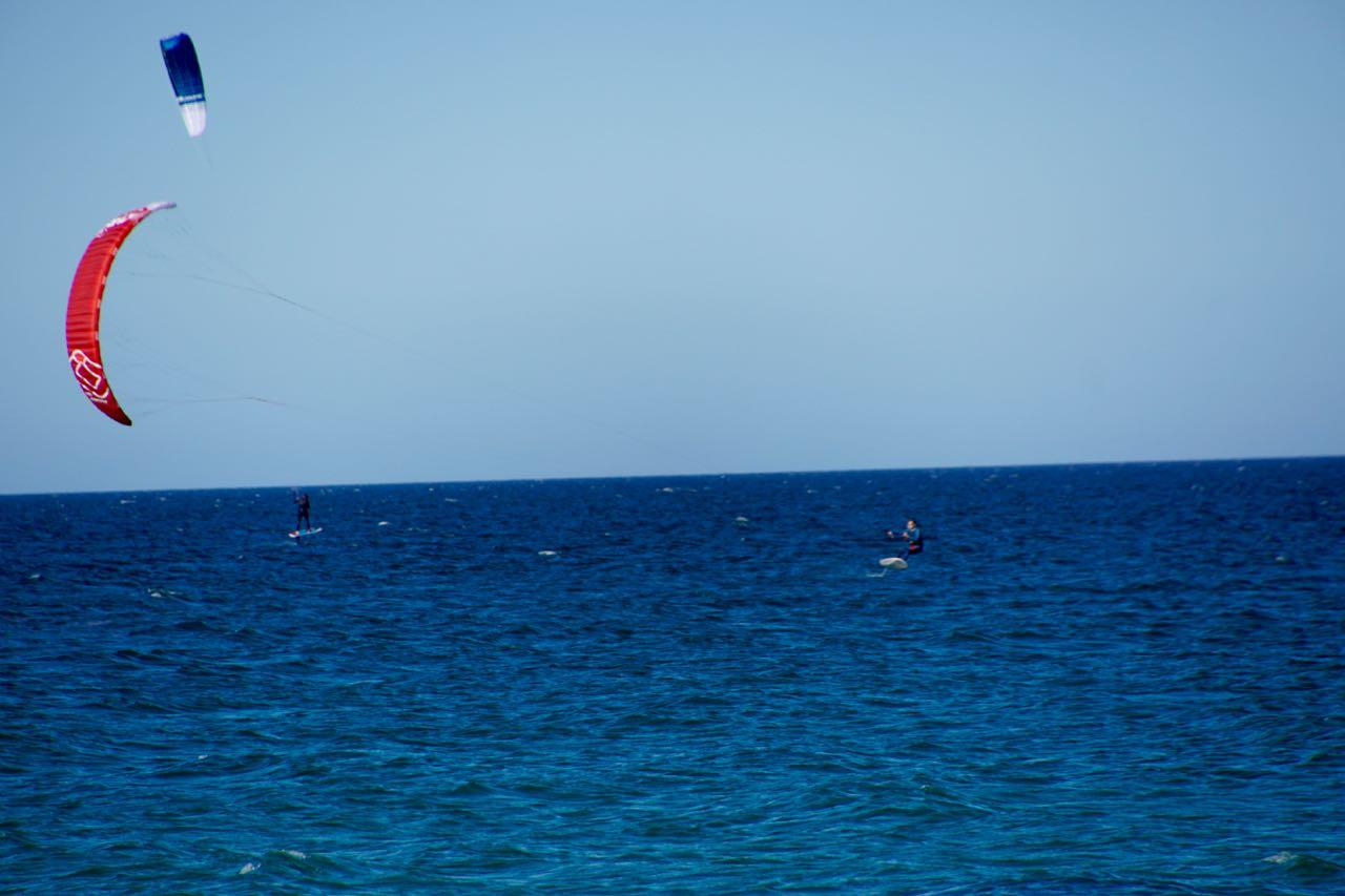 Kites...