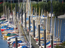 Hafen Blankenese.jpg