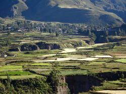 Landwirtschaft in Peru