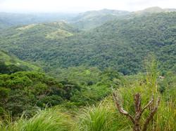 Hügelland Panama
