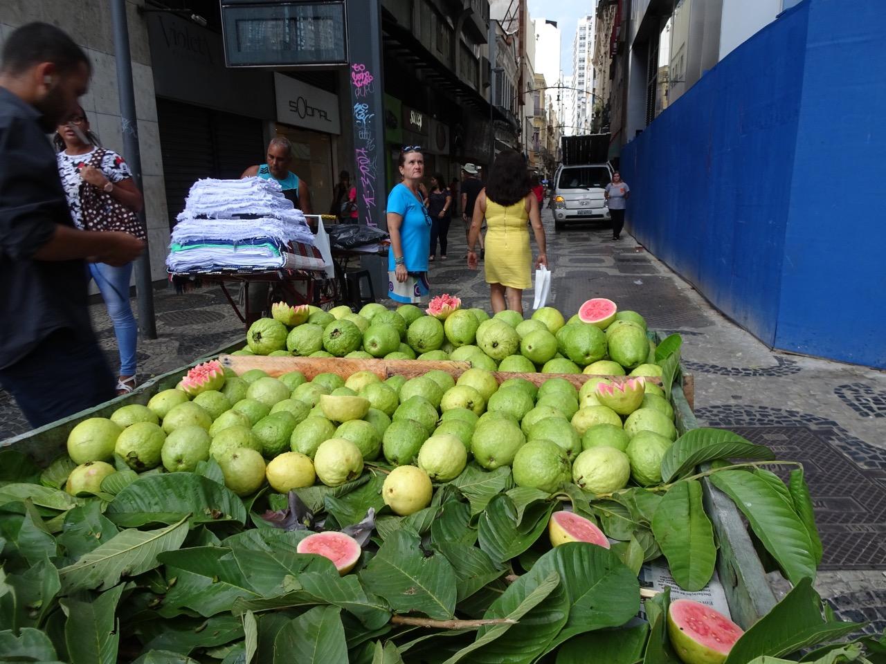 Guave haben Saison
