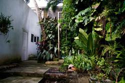 Karibischer Garten