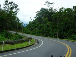 Gute Strasse durch üppiges Grün
