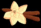 Vanilla Flower-01.png