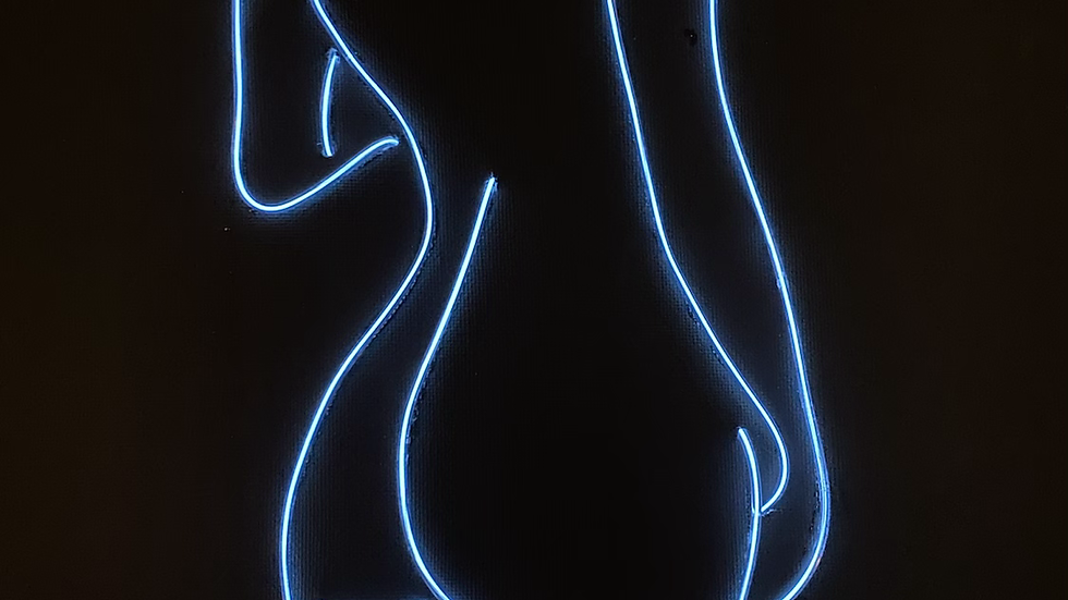 PRE-ORDER 11x14 female body outline