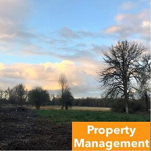 Services-PropertyManagement.jpg