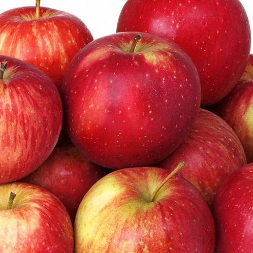 Haralson apples 3 lb bag
