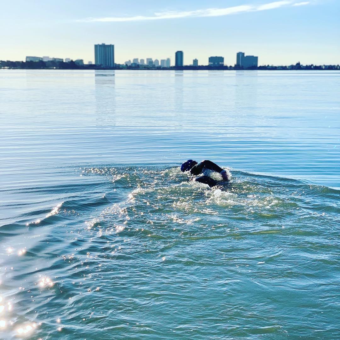 Berkeley Marina swim.jpg