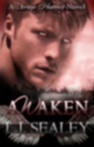 AWAKEN-New-Title-design-sml-655x1024.jpg