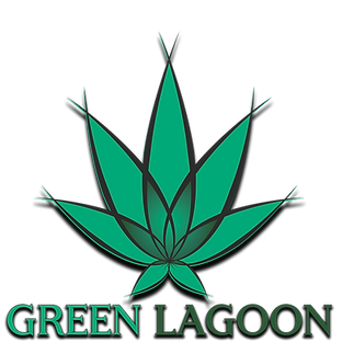 Green lagoon 3_edited.png