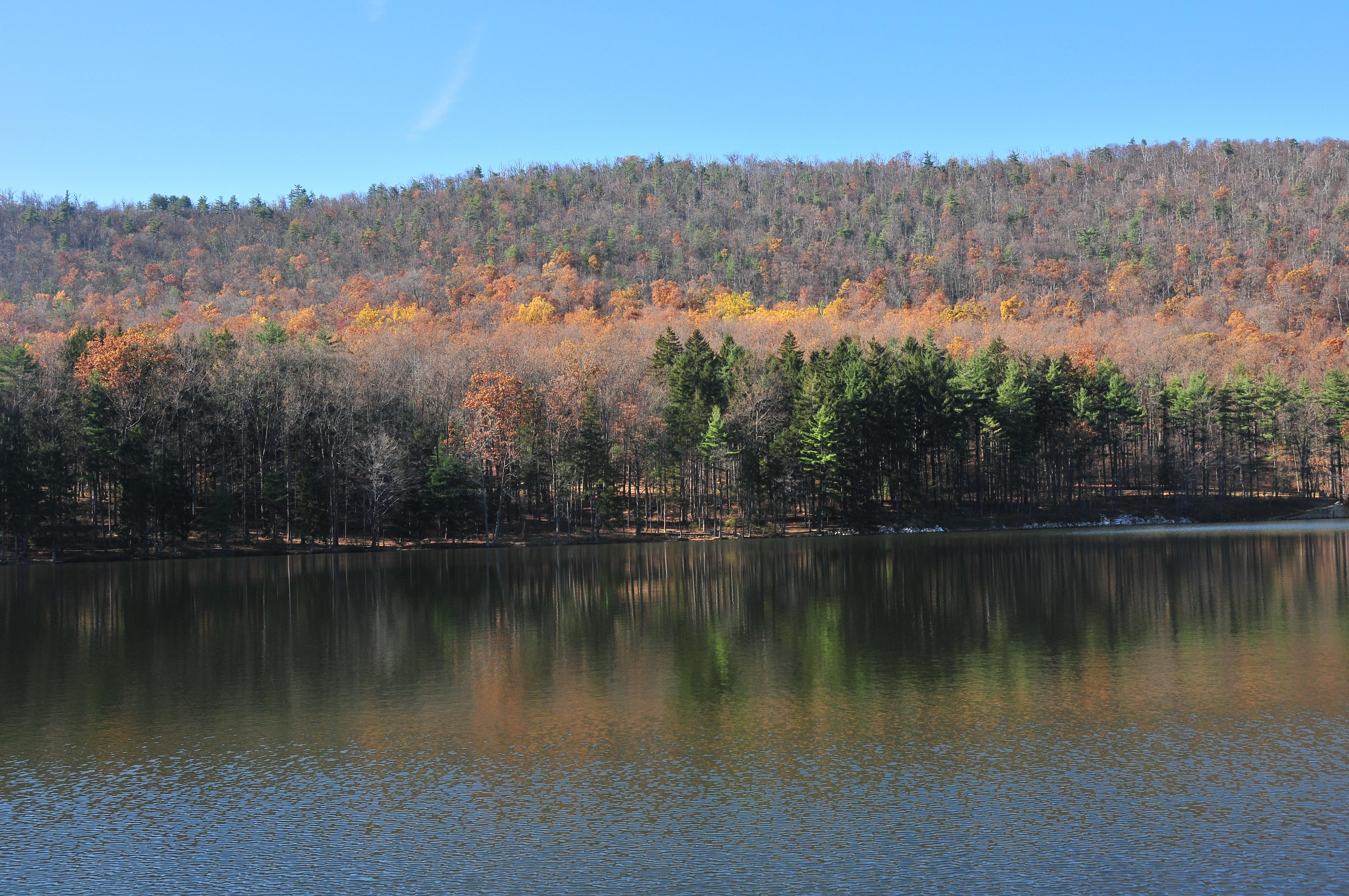 Cowen's Gap State Park In Autumn